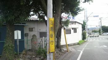 P1040254.JPG